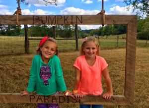 Pumpkin Paradise TN